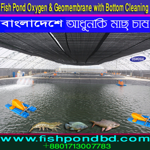Aquaculture Geomembrane Fish Pond, Aquaculture Geomembrane