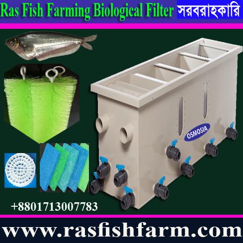 Aquaculture Indoor & Outdoor Fish Farming Equipemt