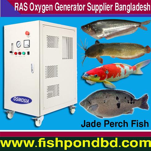 Aquaculture Indoor & Outdoor Fish Farming Equipemt :: Oxygen
