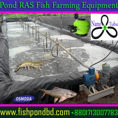 High Density Fish Farming Pond RAS, Pond RAS Fish Farming