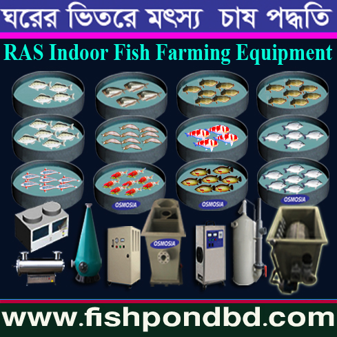 Aquaculture Indoor & Outdoor Fish Farming Equipemt :: Industrial RAS