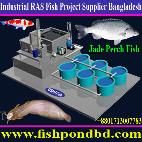 Ras System Suppliers In India