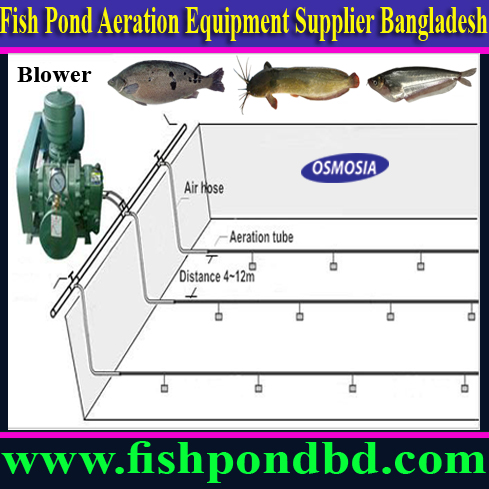 Aquaculture Indoor Outdoor Fish Farming Equipemt Nano Bubble Tube Nano Bubble Tube Price Nano Bubble Tube Price In Bangladesh Nano Bubble Aeration Equipment In Bangladesh Fish Farm Nano Bubble Aeration